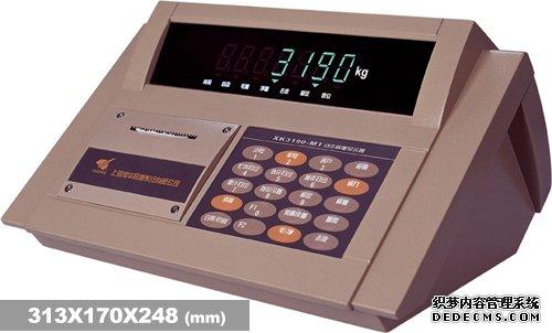 耀华XK3190―DM1称重仪表